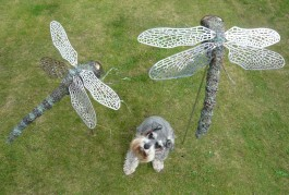 Dragonflies by Jack Russell at The Sculpture Park