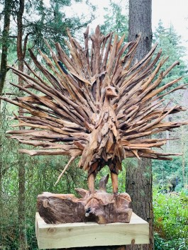 Driftwood Peacock by Anon, Unknown at The Sculpture Park
