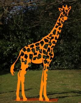 Giraffe by Danu