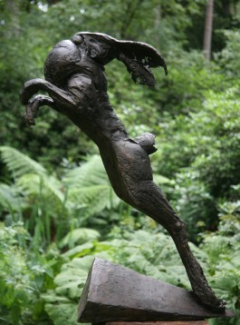 Leaping Hare by David Cooke