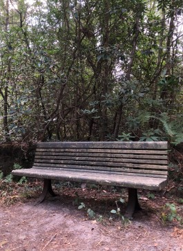 A Dutch Train Station Bench at The Sculpture Park