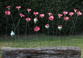 Picardie Poppies by Frances Doherty