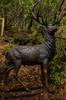 Stag by John Cox at The Sculpture Park
