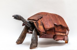 Tortoise by Anon Unknown at The Sculpture Park