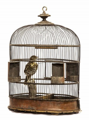 Victorian Bird Cage with Taxidermy Song Thrush at The Sculpture Park