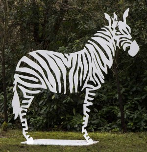 Zebre by Danu