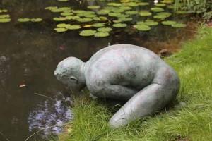 Narcissus by Ellen Christiansen