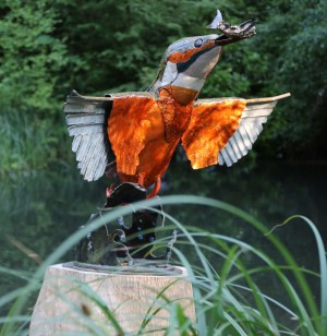 Kingfisher by Julie Grose