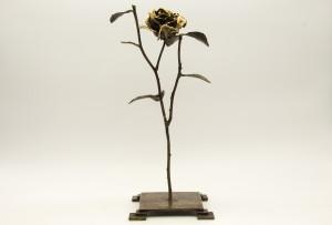 Rose by Lukasz Joniec