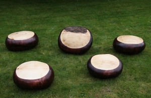 Five Giant Conkers by Michael McManus