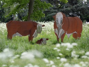 Herefordshire Cattle by Richard Cresswell at The Sculpture Park