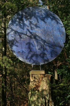 Blue Moon by Simon Smolesworth at The Sculpture Park
