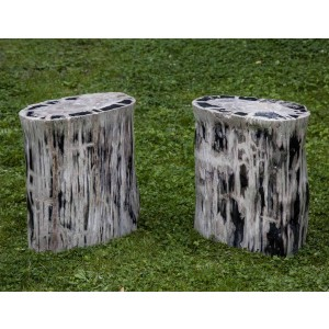 Near matching pair of petrified stools st The Sculpture Park