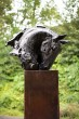 Horse Head by Brendan Hesmondhalgh at The Sculpture Park