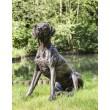 Tanya Russell, Sitting Pointer, Bronze Resin, 80cm high, 46cm wide, 85cm deep