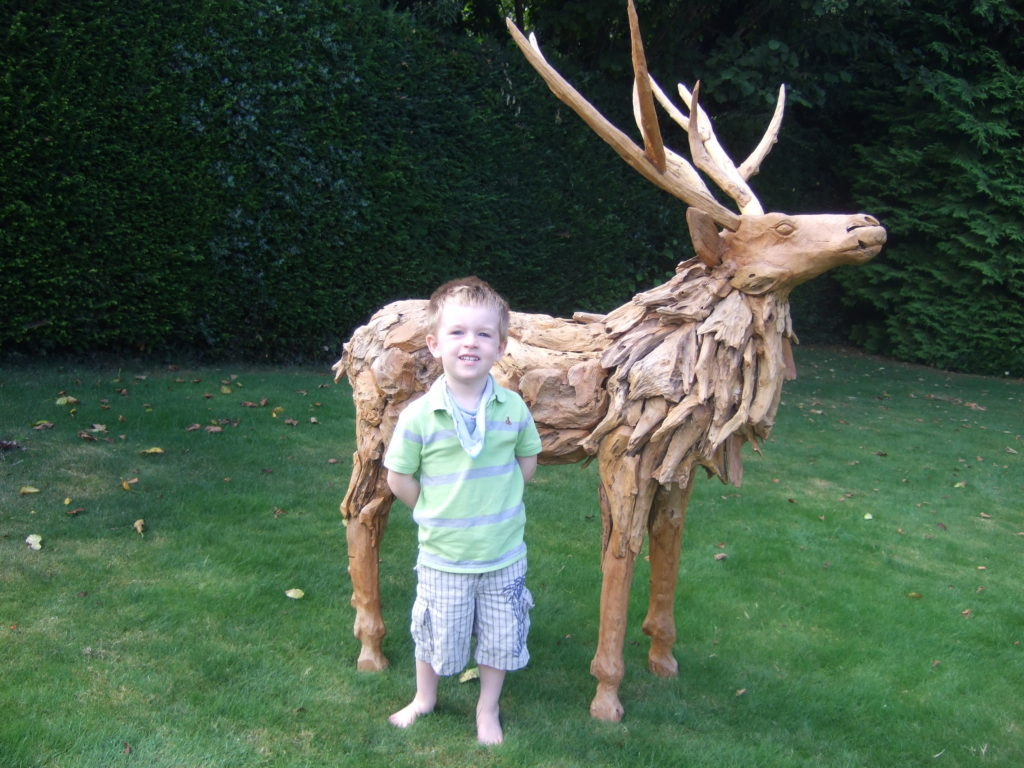 Reindeer Stag bought from The Sculpture Park