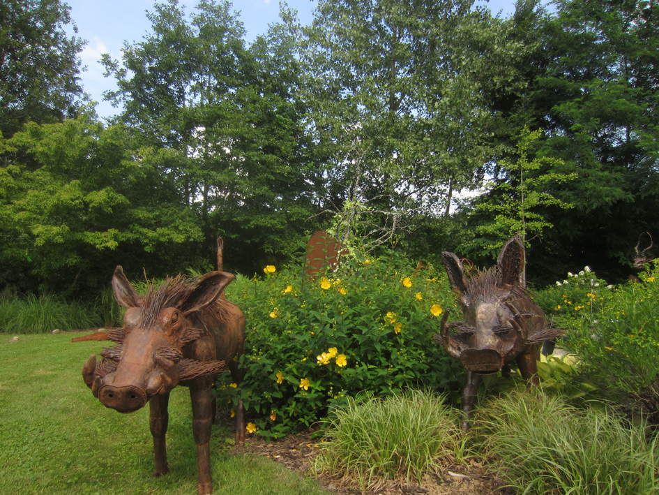 Wild boars from The Sculpture Park roam new Austrian home